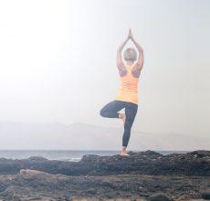 Succulance ayurveda connaitre le yoga par Dosha